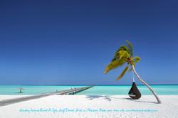 Holiday Island Resort & Spa, Maldives (1)