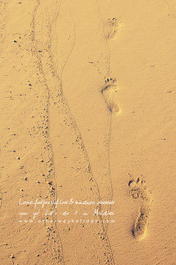 Leave only footprints, not garbage on the Beach!