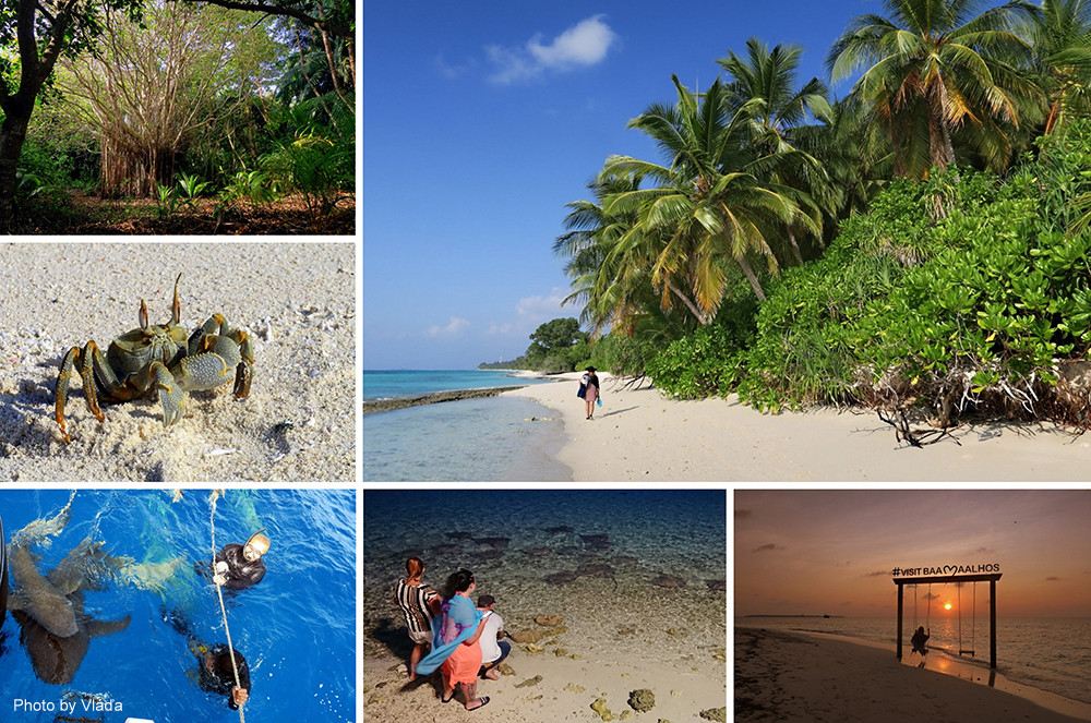 Obydlený ostrov Dhigurah, Thinadhoo a Maalhos, Maledivy