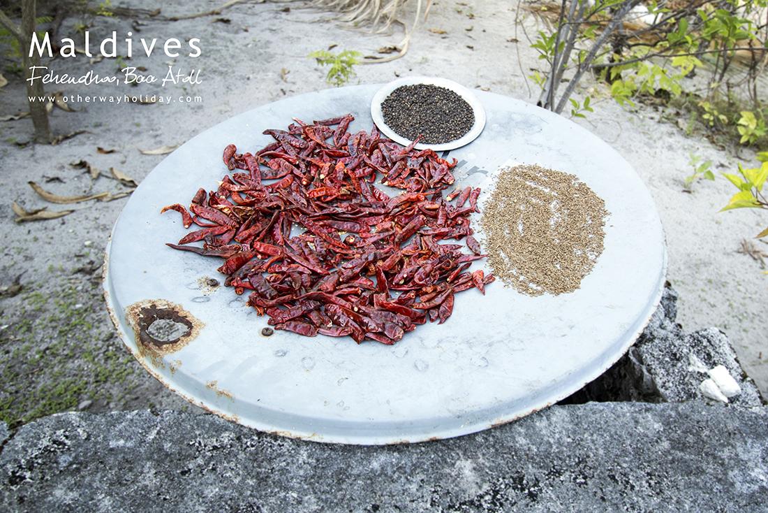 Chilli, Atholhu Residence, Fehendhoo, Baa Atoll, Maldives