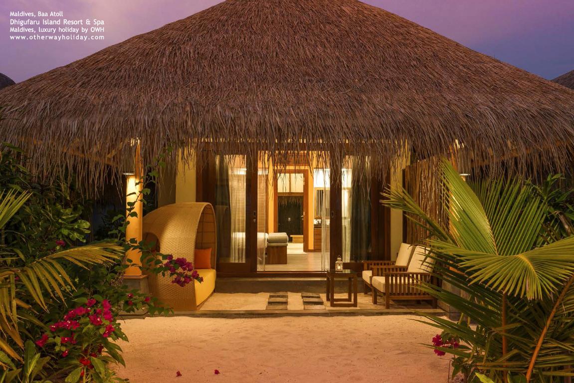 Dhigufaru Island Resort, Baa Atoll, Maldives_20 - Beach Villas