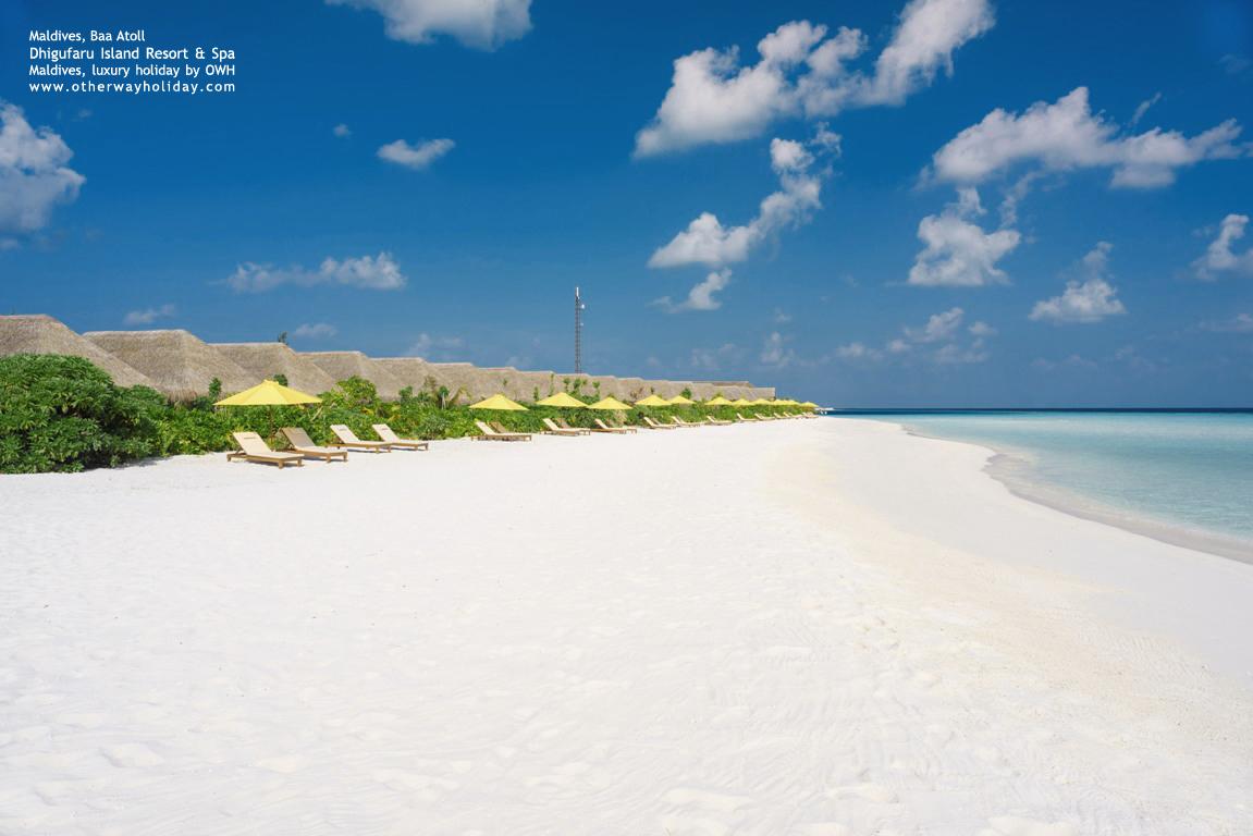 Dhigufaru Island Resort, Baa Atoll, Maldives_81 - Beach Villas