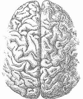 Marquette University Neuroscience Research