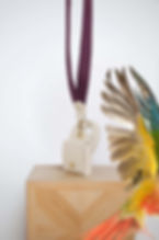 Eliott BIRD.jpg