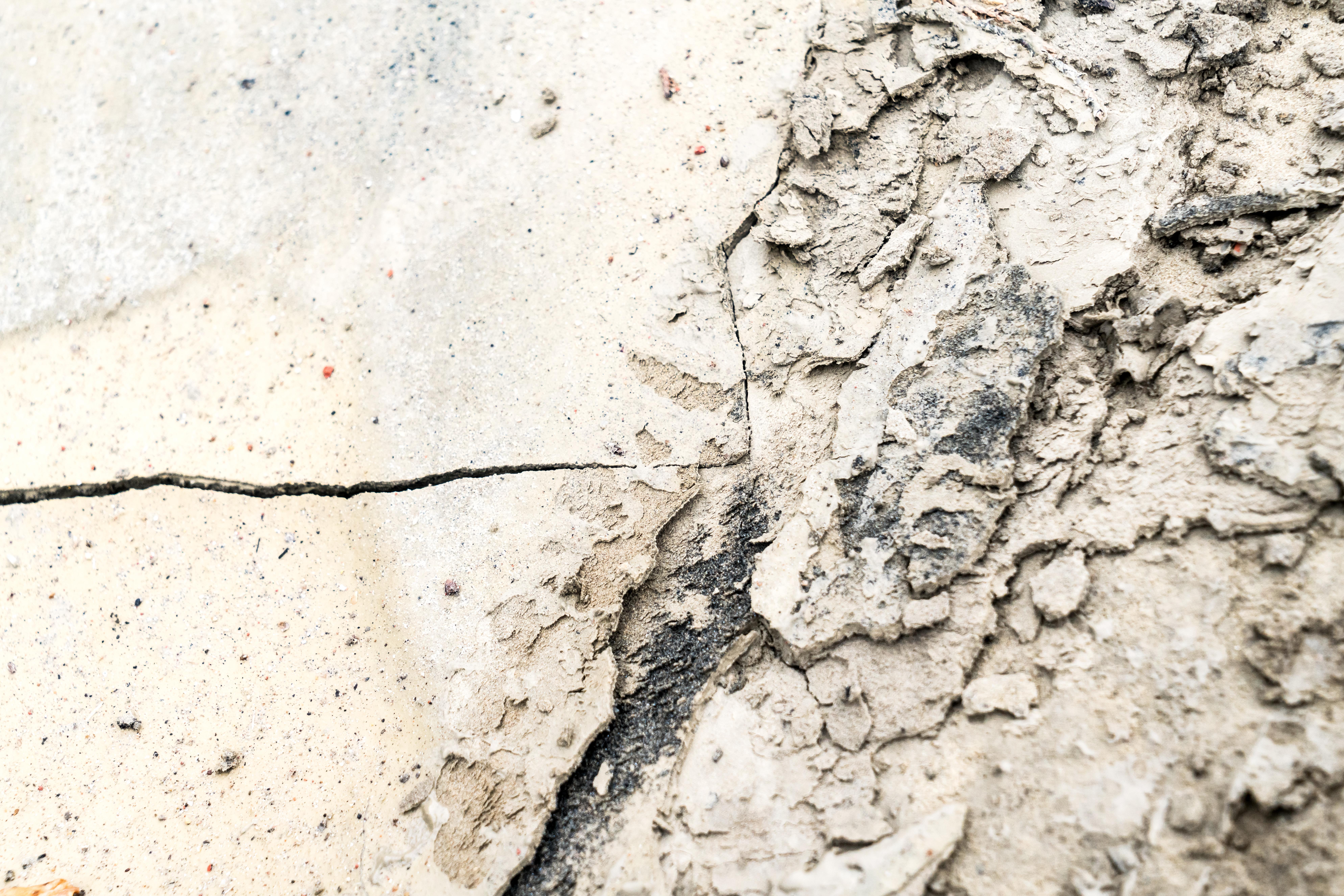 Dirt-Dung-1