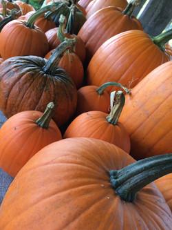 pumpkinsonstand