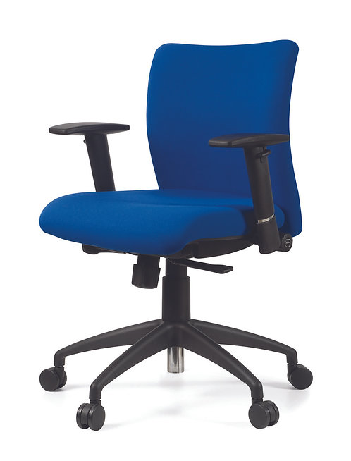 Energy Low Back Task Chair
