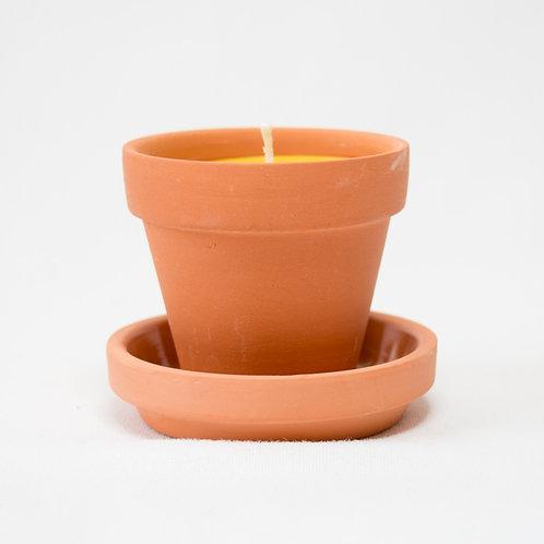 """Flower Pot - 2.5"""""""
