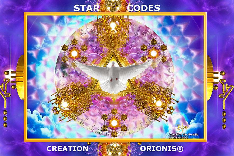Starcode : Portail