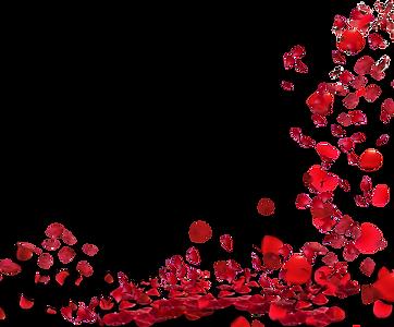 —Pngtree—rose petals floating material_8