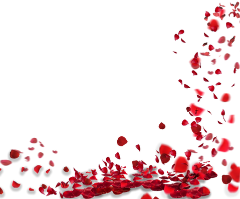 —Pngtree—rose petals floating material_8