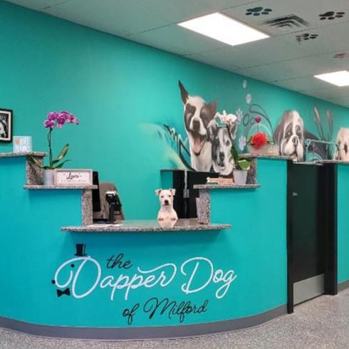The Dapper Dog of Milford Mascot