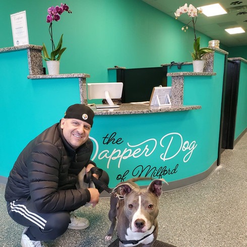 The Dapper Dog of Milford Customers