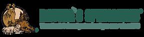 NS_Logo.png