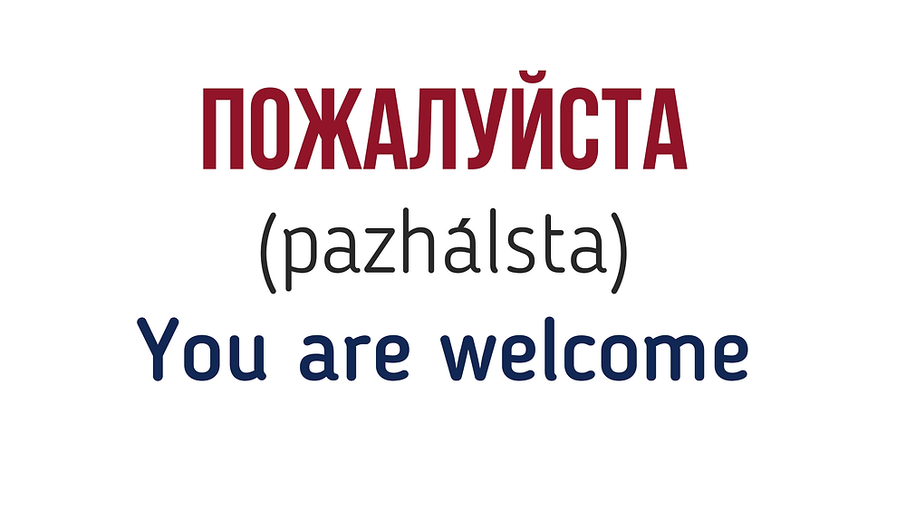 You are welcome in Russian - polite Russian words