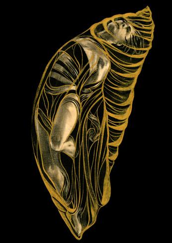 Chyrsalis