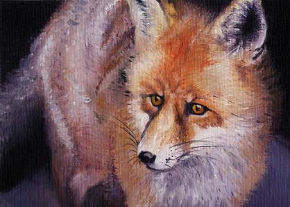 Foxy Woxy