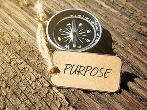 What's Your Purpose?