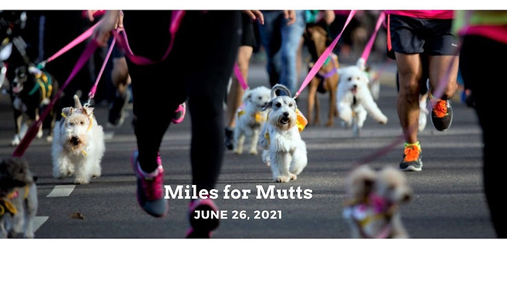 Miles for Mutts FB cover.jpg