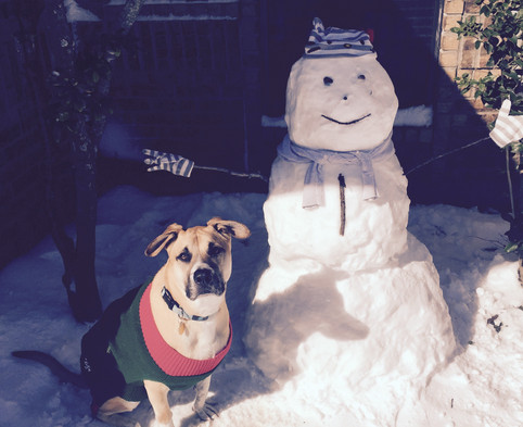 Polo and Snowman