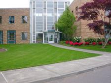 Entrance-landscaping (2).jpg