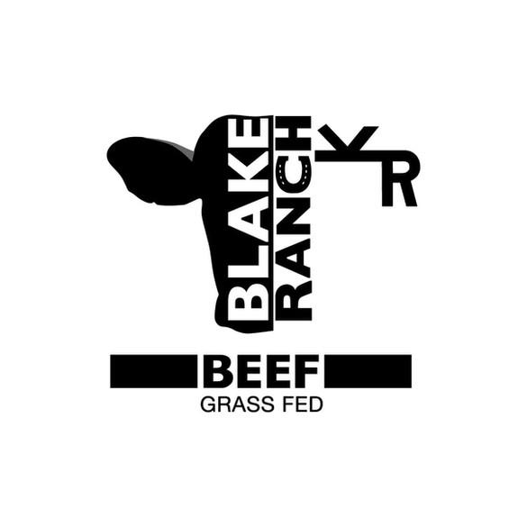 BR-logo-design.jpg