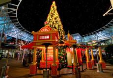christmas-holiday-tree-lighting.jpg