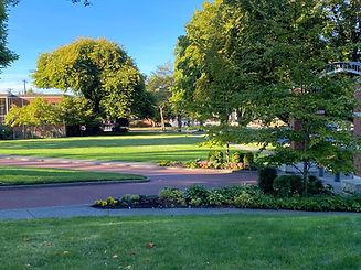 Landscaped lawn maintenance