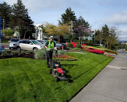 earthworks-landscaping-works.jpg