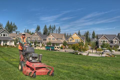 Lawn-maintenance-mowing.jpg