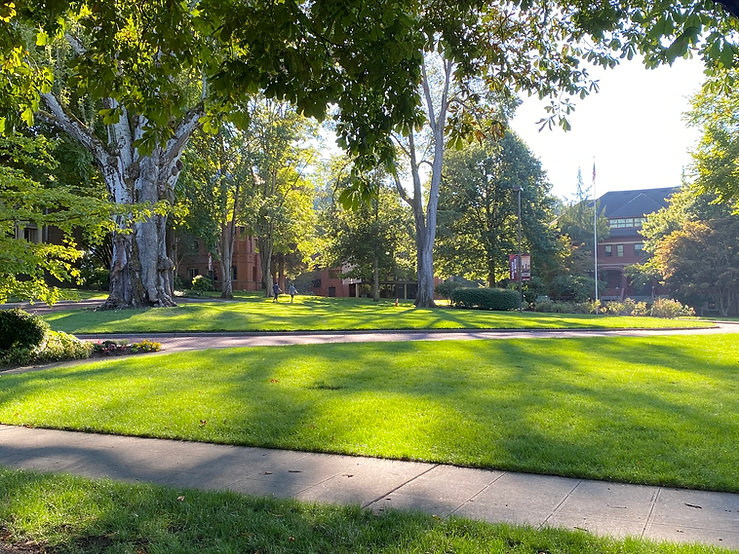 Beautifully landscaped lawn on a college campus.
