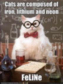 cats-science.jpg
