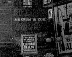 1914 zoom.jpg
