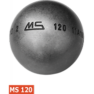 MS120.png
