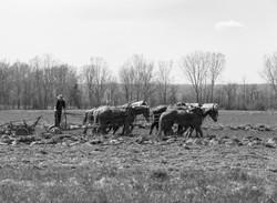 Farmer Tilling