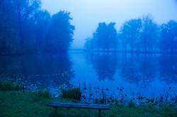 Stewart Park Lagoon Misty Morning