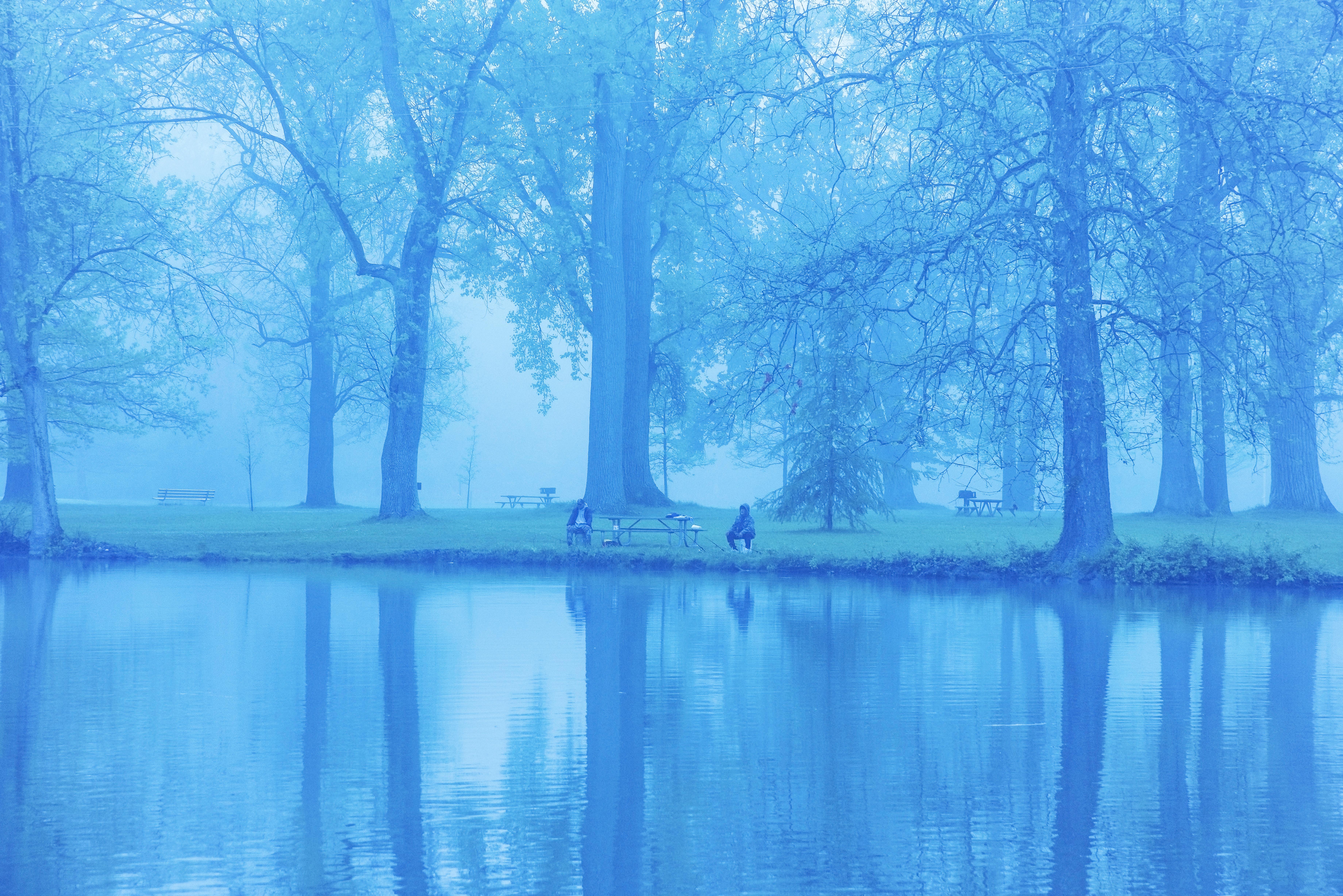 Stewart Park Lagoon in the Mist