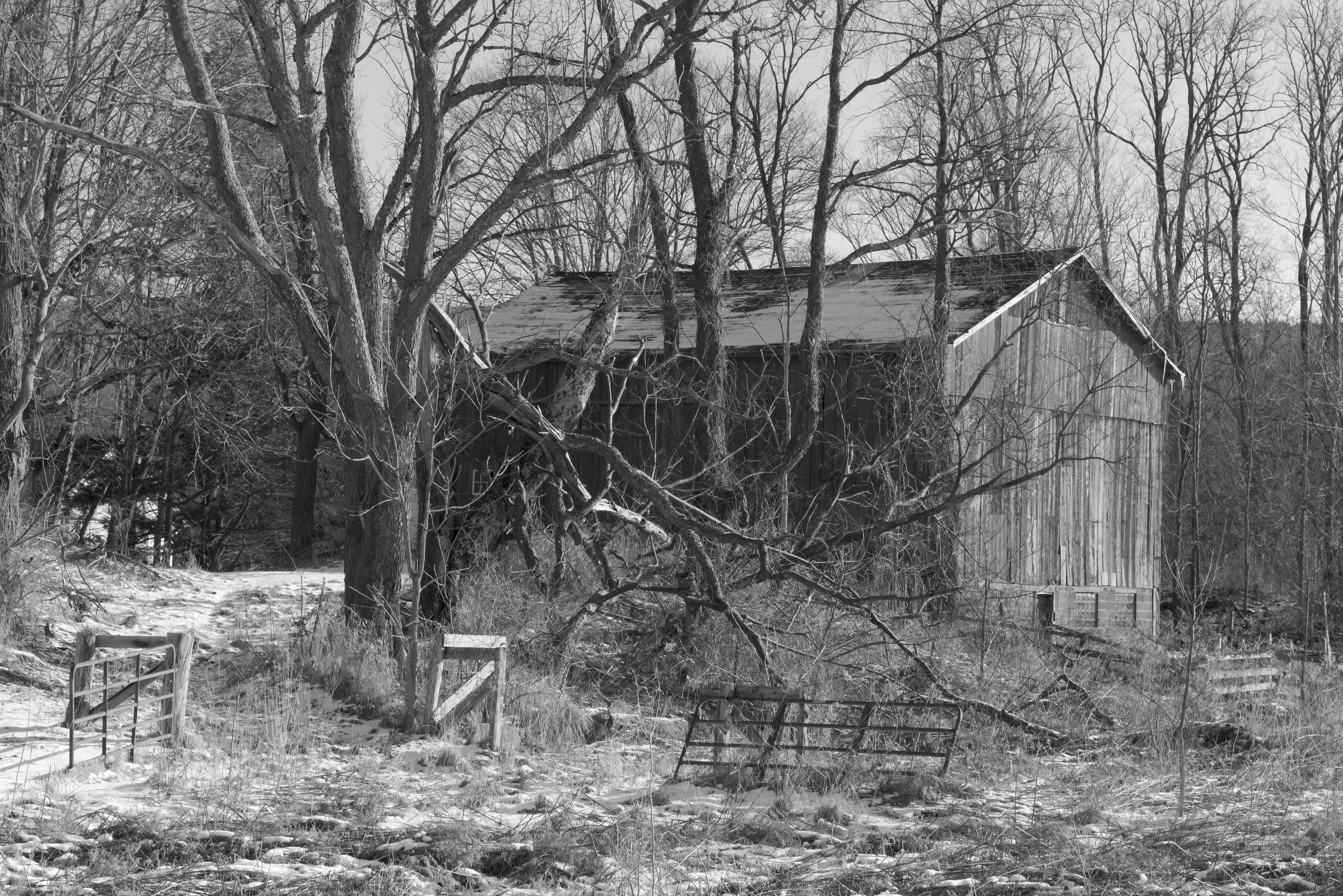 Danby Barn