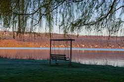Lover's Swing, Stewart Park 2020
