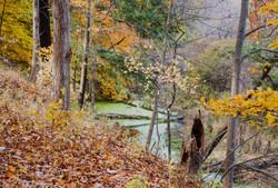 Cayuga Trail, Cornell University