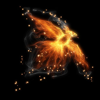 Firebird_image-bg.jpg