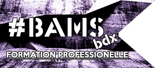 bams site web.png