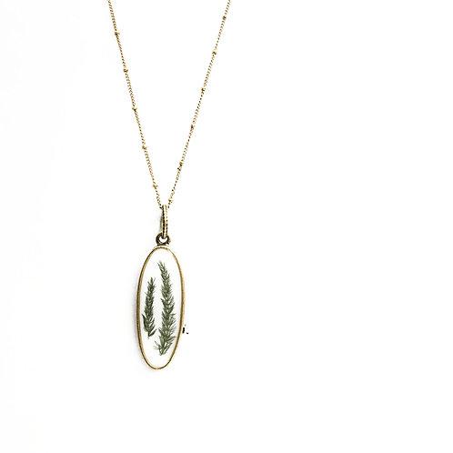 Plumosa Fern Oval Necklace