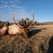 Lobo Outfitters Elk Hunt, New Mexico