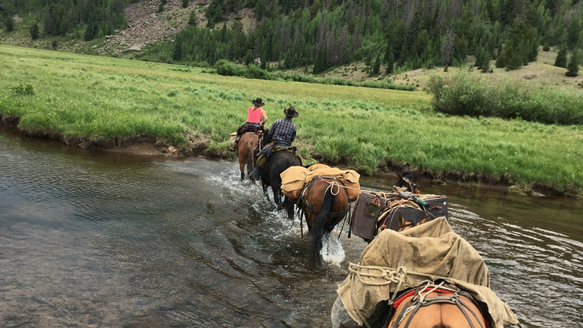Lobo Outfitters, Packtrip, River crossing