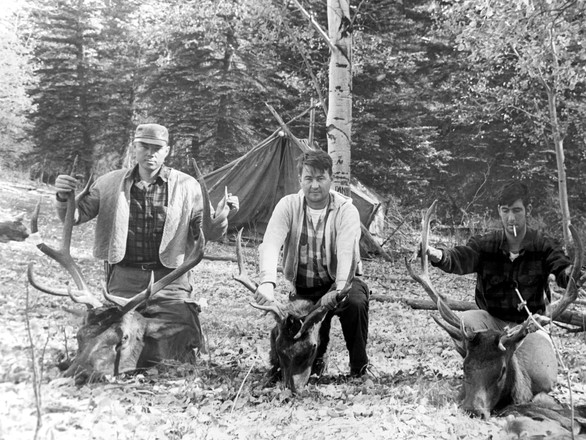 The first Lobo Elk hunters. 3 for 3.