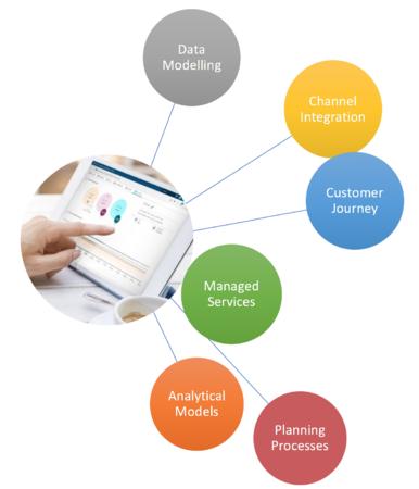 SAS CI 360 Implementation Services