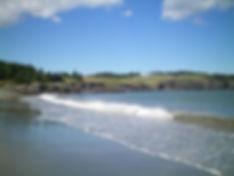 Sandy_Cove_Beach_5.jpg