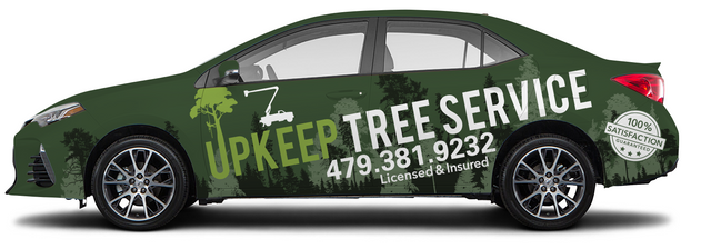 tree driver portfolio.PNG