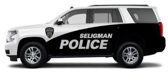 seligman driver.PNG